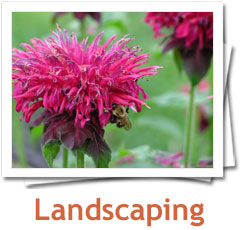 Landscaping Photo Album - Metamorphosis Landscape Design, Long Island, NY