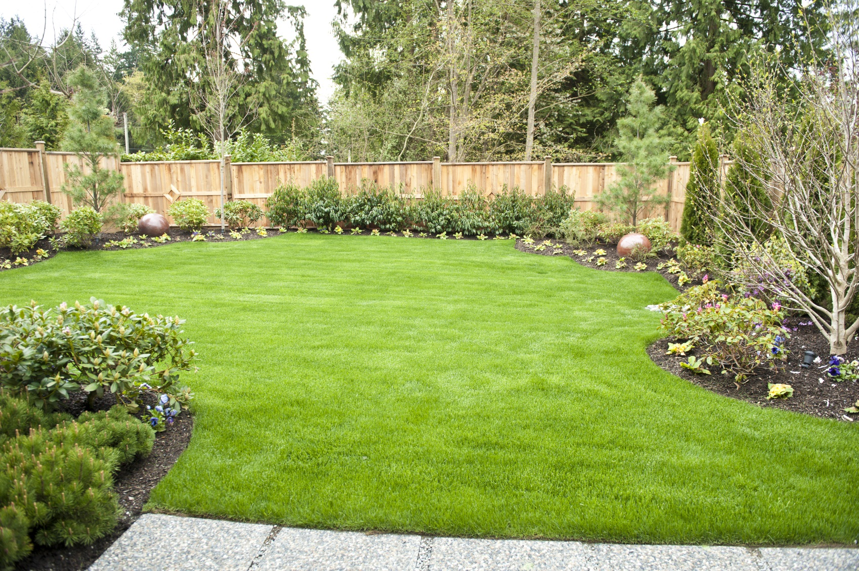 Garden in my backyard wordreference forums for Lawn landscaping ideas
