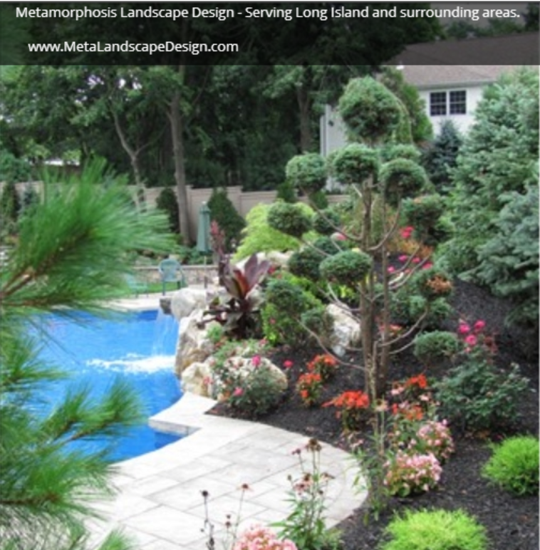 Pool landscaping projects by Metamorphosis Landscape Design